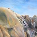 Desert by Muriel Dolemieux