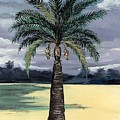 Desert Palm 2 by Stephen Broussard