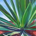 Desert Plant by Karen Doyle