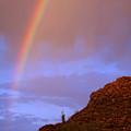 Desert Rainbow by Jill Reger