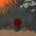 Desert Rose by Amite Duncan