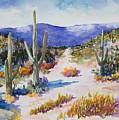 Desert Scene 2 by M Diane Bonaparte