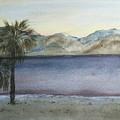 Desert Sea by Susan Nielsen