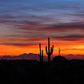 Desert Skyline  by Saija Lehtonen