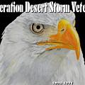 Desert Storm Eagle by Bill Richards