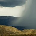 Desert Storm by Renee Hong