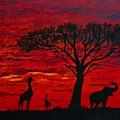 Desert Sunset 3 by Barbara Griffin