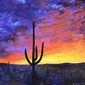 Desert Sunset 4 by M Diane Bonaparte