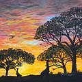 Desert Sunset  by Barbara Griffin