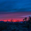 Desert Sunset by Barbara Hayton
