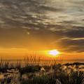 Desert Sunset  by Subhadra Burugula