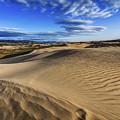 Desert Texture by Chad Dutson