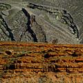 Desert Texture by Jonathan Fine
