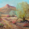 Desert Trails by Sally Seago