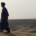 Desert Trek, Sahara Desert by Diane Berard