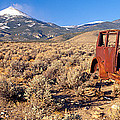 Deserted Car With Cow Skeleton, Great by Panoramic Images