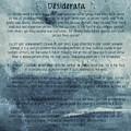Desiderata 6 by Andrea Anderegg