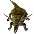 Desmatosuchus On White by Corey Ford