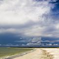 Desoto Beach by Nicholas Evans
