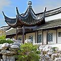 Detail Chinese Garden With Rocks. by Nareeta Martin