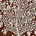 Detail Of A Vintage Botanical Pattern by Anglo Indian School