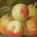 Detail Of Apples On A Shelf by Jakob Bogdany