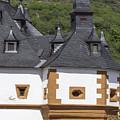 Detail Of Burg Pfalzgrafenstein by Teresa Mucha