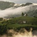 Detail Of Rolling Fog At Sunrise In The Skofjelosko Hribovje Hil by Reimar Gaertner