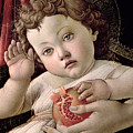 Detail Of The Christ Child From The Madonna Of The Pomegranate  by Sandro Botticelli