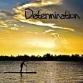 Determination by Lisa Renee Ludlum