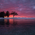 Detroit Point Sunset Off The Ice by Ron Wiltse