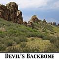 Devil's Backbone by John Meader