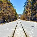 Devil's Lake Railroad by Ricky L Jones
