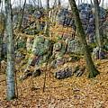 Devils Lake Rock Formation  by Ricky L Jones