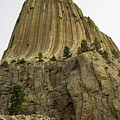 Devils Tower 5 by Tracy Knauer