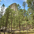 Devil's Tower National Monument, Wyoming by Jim Hughes
