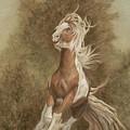 Devon The Gypsy Horse by Gail Finger