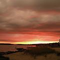 Dewey Beach Bayside by Trish Tritz