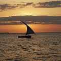Dhow At Sunset by Harvey Barrison