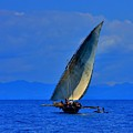 Dhow On The Indian Ocean 2 by Stacie Gary