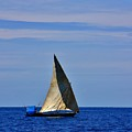 Dhow On The Indian Ocean by Stacie Gary