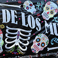 Dia De Los Muertos Banner  by Chuck Kuhn