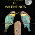 Dia Feliz De Valentinos Bee Eaters by Eric Kempson