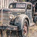 Diamond T Logging Truck by Jean OKeeffe Macro Abundance Art
