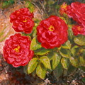 Diane's Roses by Donelli  DiMaria