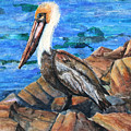 Dick The Pelican by Patricia Allingham Carlson
