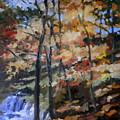 Dick's Creek Falls by Martha Tisdale