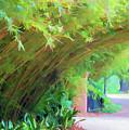 Digital Bamboo Rip Van Winkle Gardens  by Chuck Kuhn