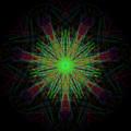 Digital Leaf by Thomas Gastineau