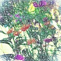 Digital Pencil Sketch Flowers by Debra Lynch